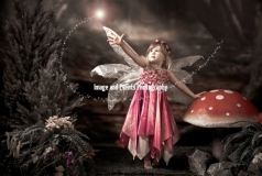 Fairy and Elf Photography 015