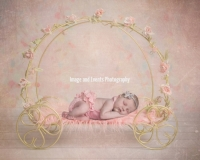 Newborn baby girl in Princess carriage